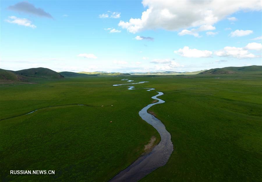 Очарование бескрайних степей Внутренней Монголии