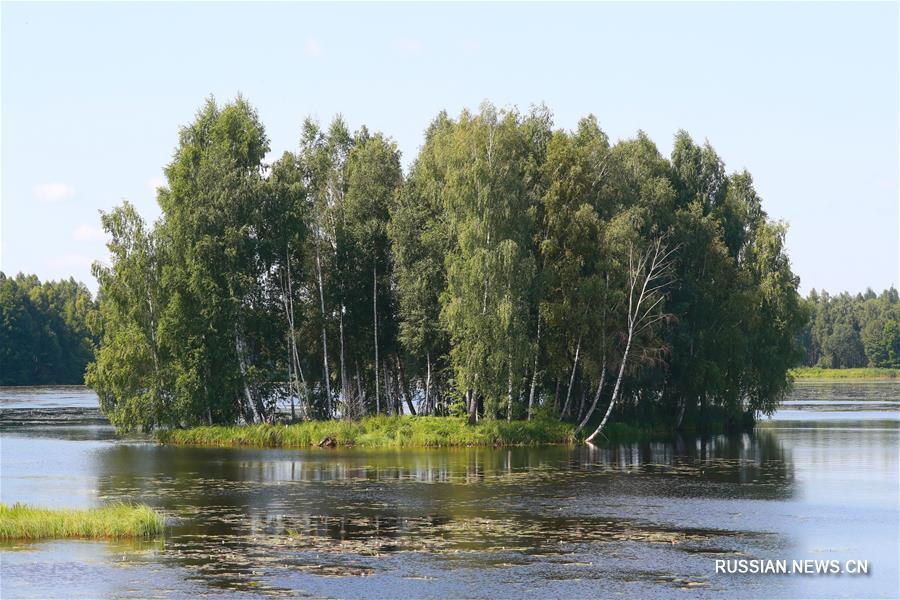 Белорусский экопроект с поддержкой КНР принес свои результаты