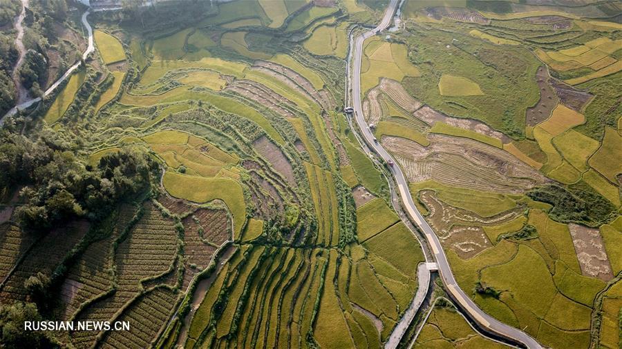 Осеннее очарование Сянси-Туцзя-Мяоского автономного округа