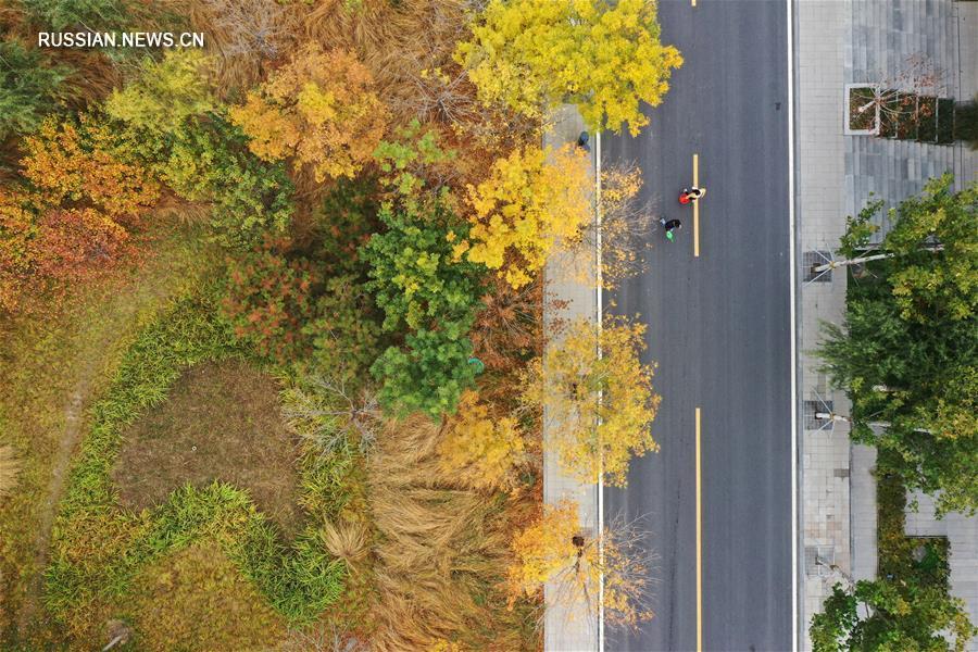 На фото -- осенние виды нового района Сюнъань в провинции Хэбэй /Северный Китай/.