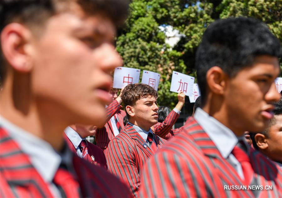 Новозеландские школьники исполнили боевой танец хака, чтобы поддержать Китай в битве с эпидемией
