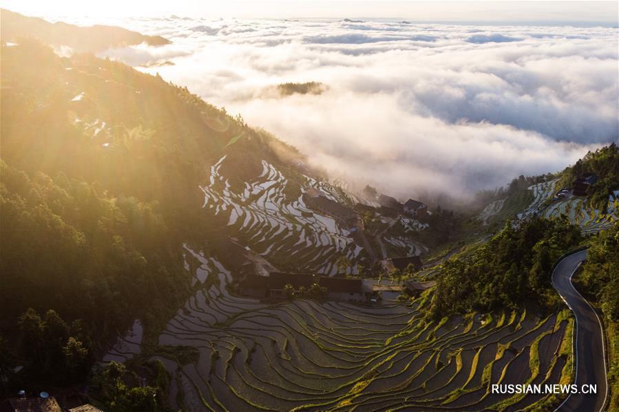 Террасные поля Цзыцюэцзе в провинции Хунань