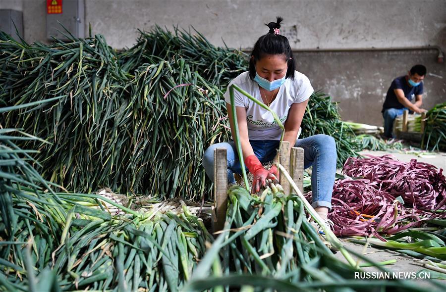Крупнейший в Урумчи рынок сельхозпродукции заработал в круглосуточном режиме