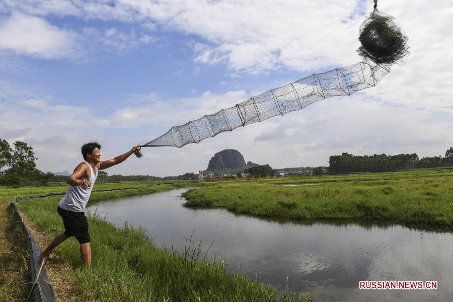 Статус беднейших снят со всех уездов Гуанси