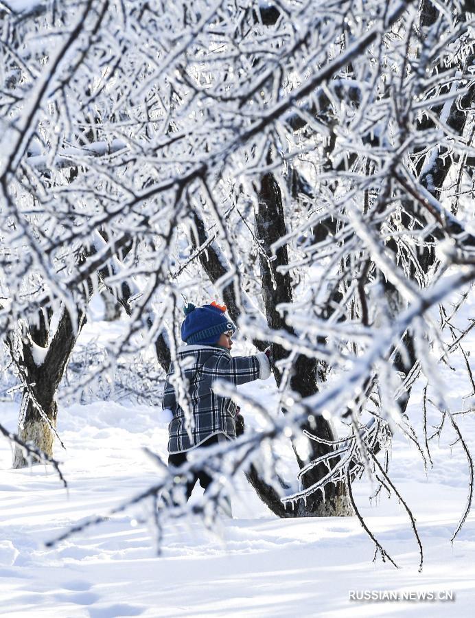 Снежное царство в Чанчуне