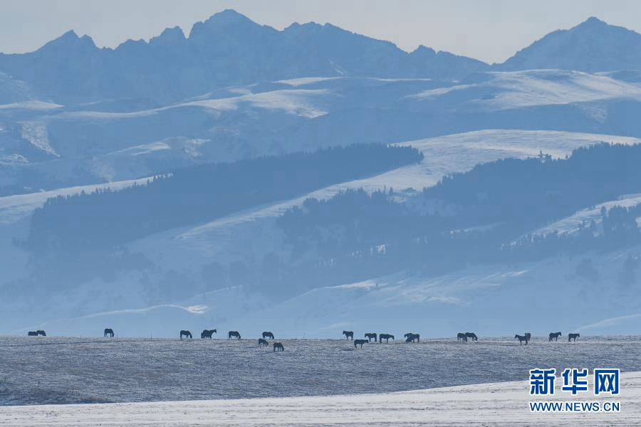 Зимнее очарование в Или-Казахском автономном округе СУАР