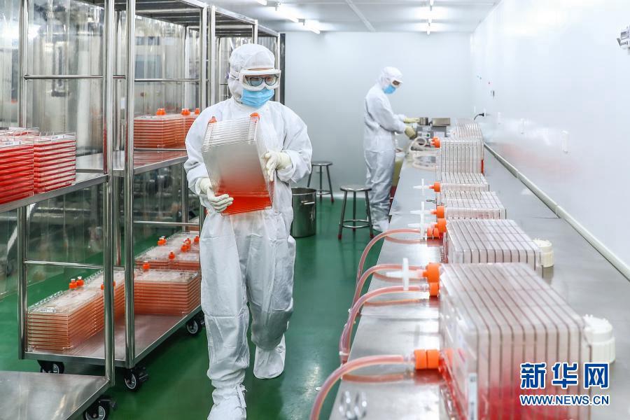 Фотоальбом: как производится инактивированная вакцина от COVID-19 в Китае