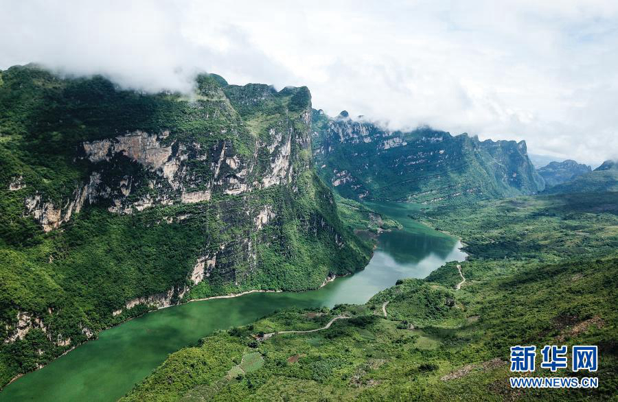 Коэффициент лесного покрова в провинции Гуйчжоу составляет 60%
