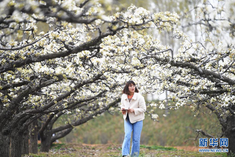 Весна в новом районе Сюнъань
