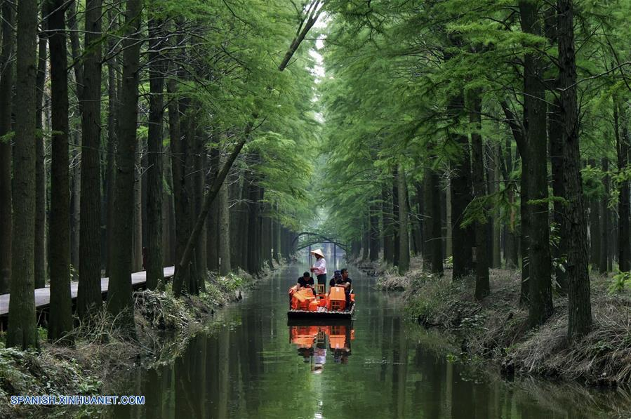 (3)CHINA-JIANGSU-BOSQUE-TURISMO