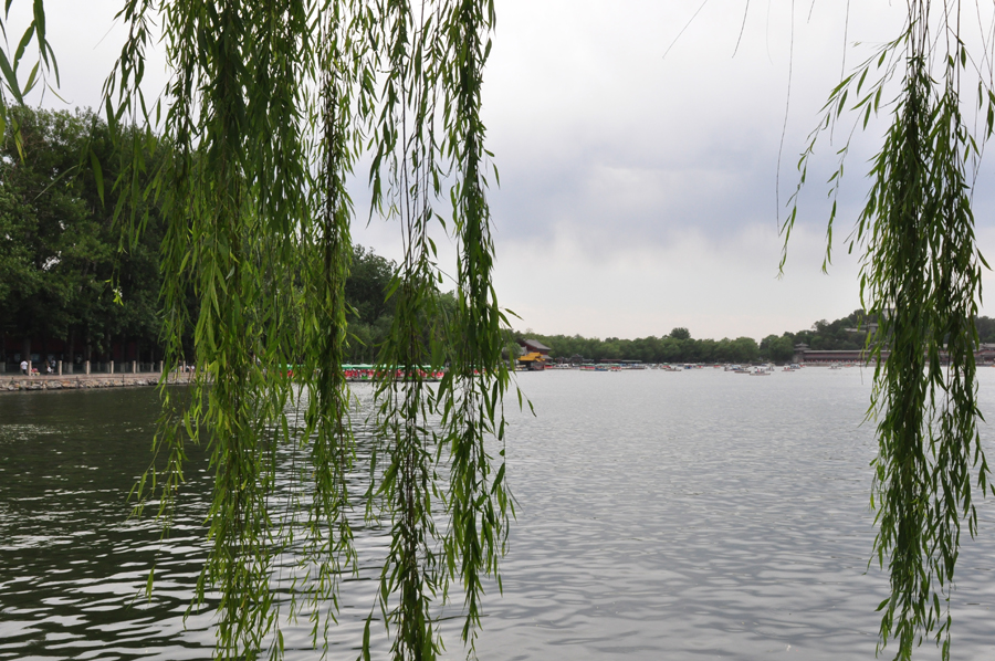 Located to the west of the Forbidden City and Jingshan Park, Beihai (literally the Northern Sea) Park is one of the oldest, largest and best-preserved ancient imperial gardens in China. It was the former palace of emperors for successive dynasties. The park covers an area of 68 hectares, half of which is covered by a lake.