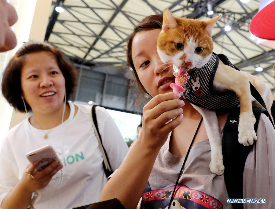 A pet cat tastes cat snacks at the 21st Pet Fair Asia in Shanghai, east China, Aug. 25, 2018. [Photo/Xinhua]