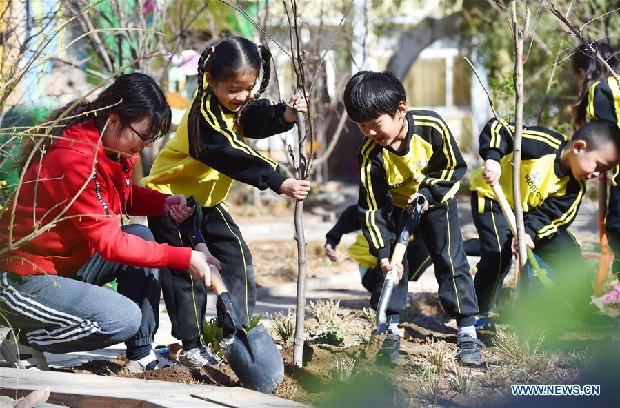 Afforestation Projects Succeed In Greening Up China- China