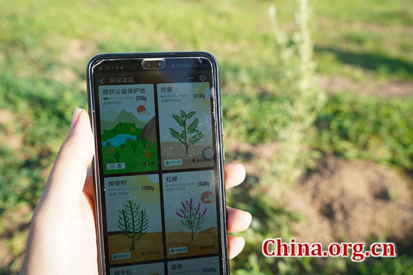 From virtual 'ant forest' to reality in Inner Mongolia